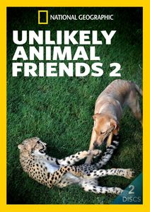 Unlikely Animal Friends 2