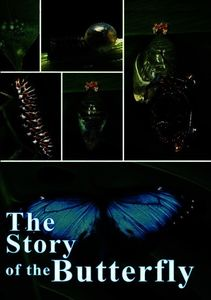 The Story Of The Butterfly [Instructional]