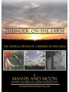 Thunder on the Farm