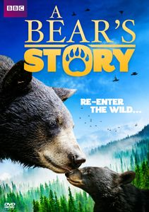 A Bear's Story: Spirit's Adventure