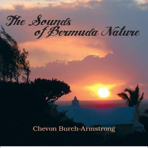 Sounds of Bermuda Nature