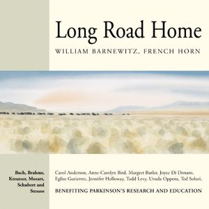 Long Road Home /  Various