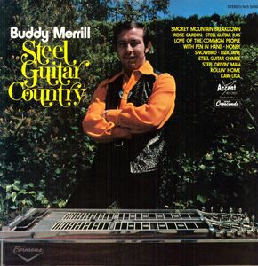 Steel Guitar Country