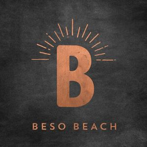 Beso Beach 2017: Mixed By Jordi Ruz /  Various [Import]