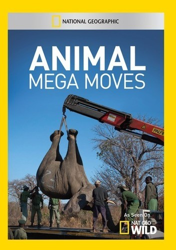 Animal Mega Moves