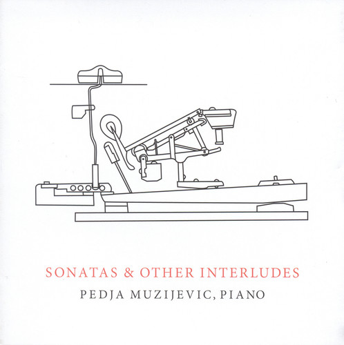 Sonatas & Other Interludes