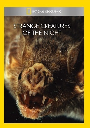 Strange Creatures of the Night