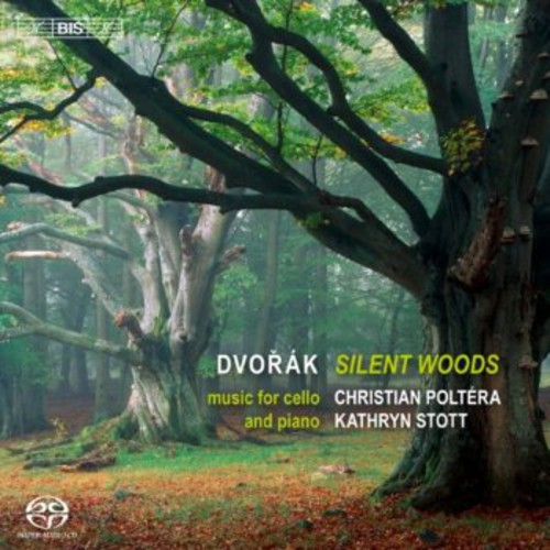 Silent Woods