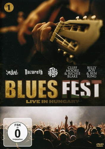 Blues Fest 1 /  Various