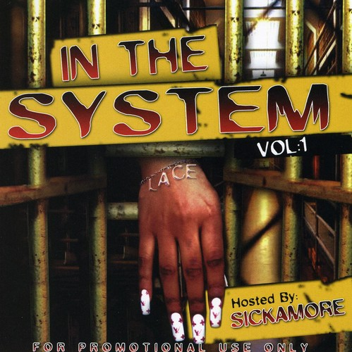 In the System 1
