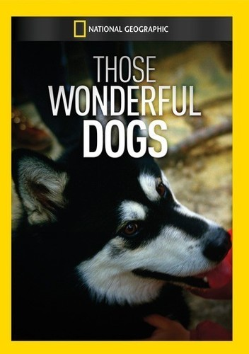 Those Wonderful Dogs