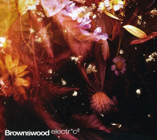 Brownswood Electr*c 2
