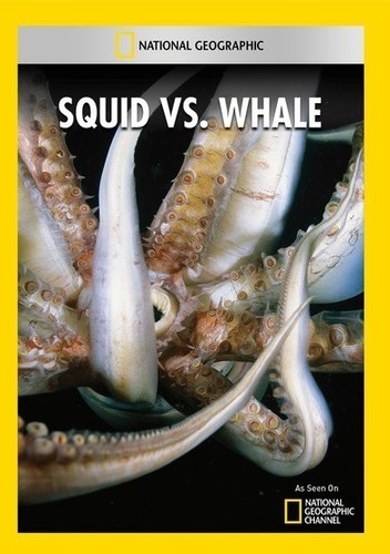 Squid Vs Whale