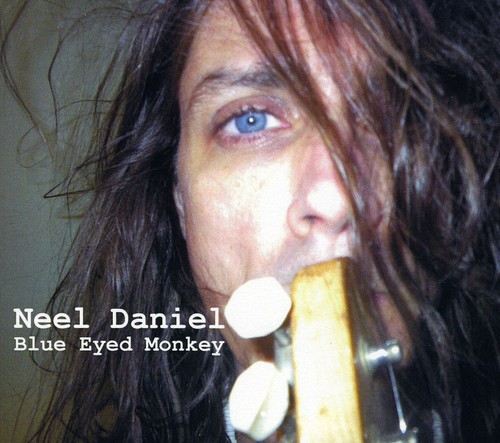 Blue Eyed Monkey