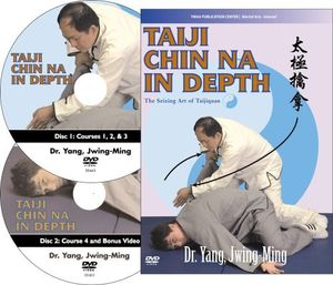 Taiji Chin Na In Depth