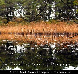 Cape Cod Soundscapes: Evening Spring Peeper 4