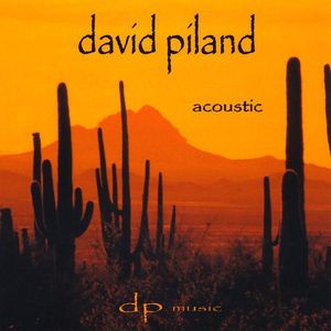 David Piland Accoustic