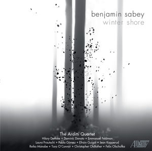 Benjamin Sabey: Winter Shore
