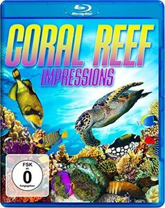 Coral Reef - Impressions