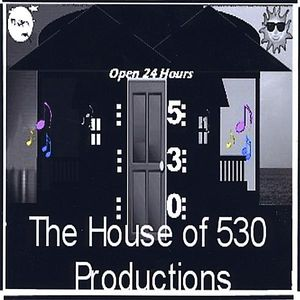 House of 530 Compilation 1 /  Various