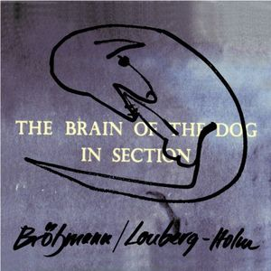 Brain of the Dog in Section