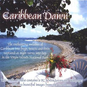 Captured Ambiance : Caribbean Dawn