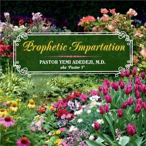 Prophetic Impartation