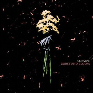Burst & Bloom