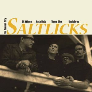 Denver City Saltlicks