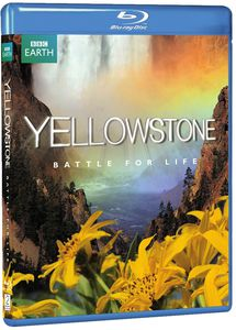 Yellowstone: Battle For Life [Widescreen]