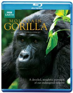 Mountain Gorillas [Import]