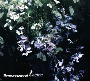 Brownswood Electric