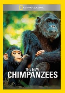 New Chimpanzees
