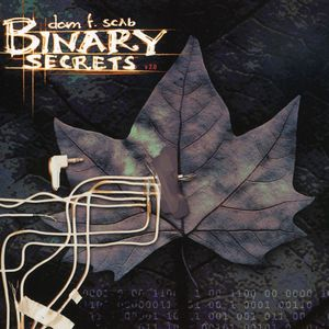 Binary Secrets