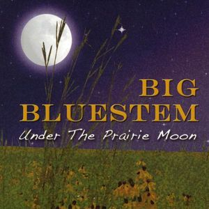 Under the Prairie Moon