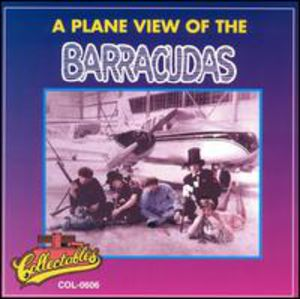 A Plane View Of The Barracudas