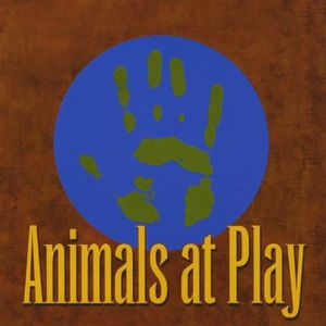 Animals at Play