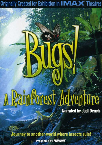 Bugs: A Rainforest Adventure