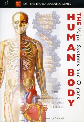 Just The Facts: The Human Body - Major Systems and Organs