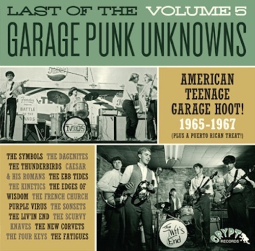Last Of The Garage Punk Unknowns 5 /  Various