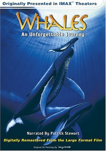 IMAX /  Whales: Unforgettable Journey
