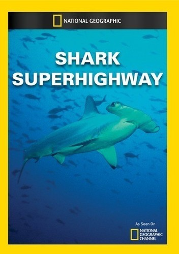 Shark Superhighway