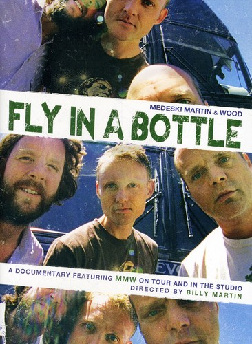 Fly in a Bottle