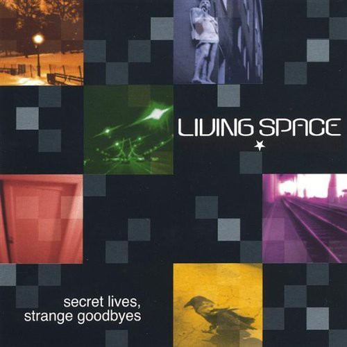 Secret Lives Strange Goodbyes