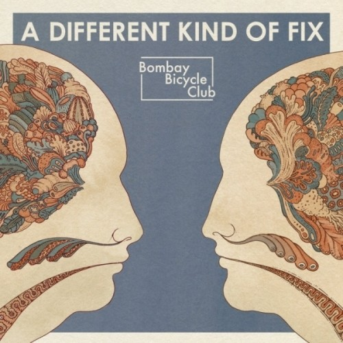 Different Kind of Fix [Import]