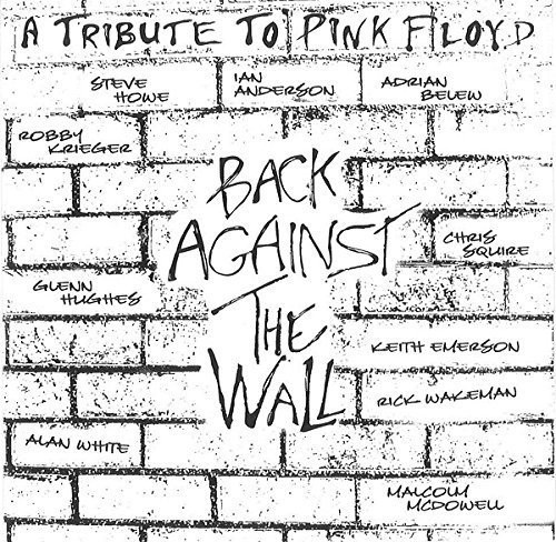 Pink Floyd: Tribute to Back /  Various