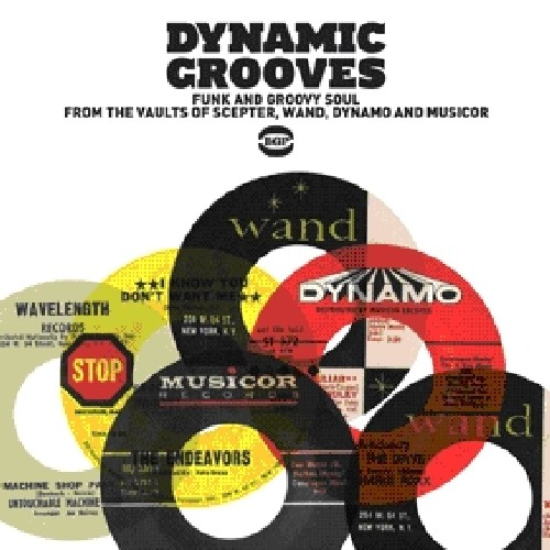 Dynamic Grooves /  Various [Import]