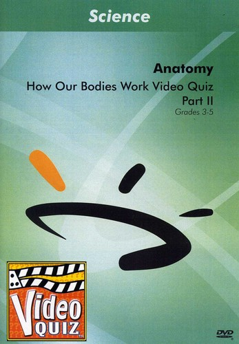 How Our Bodies Work 2