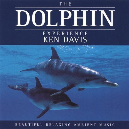 Dolphin Experience