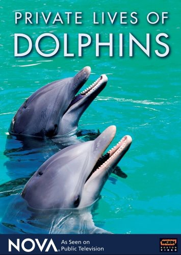 Nova: Private Lives of Dolphins